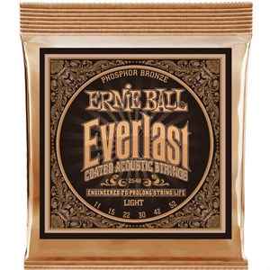 ERNIE BALL 2548 11-52 Everlast Phosphor Bronze light
