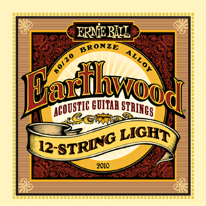 9-46 ERNIE BALL 2010 Earthwood 12-string Light